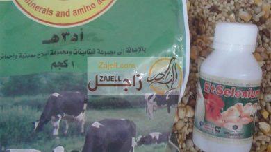Photo of جرعة فيتامينات أد3هـ وسيلينوم للحمام