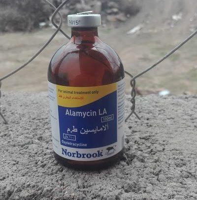 علاج فعال للحمام من خطر الأمراض التنفسية